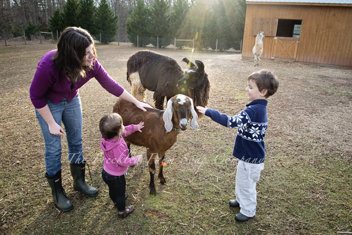 The Family - The Freckled Farm Soap Company Goat Milk Soap