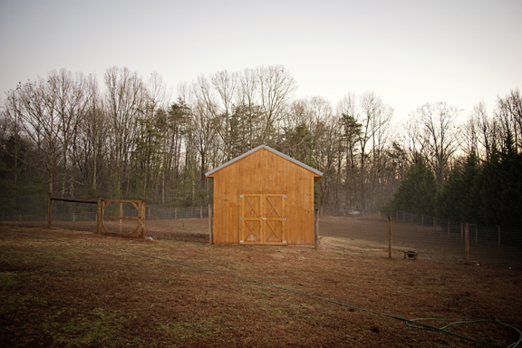 Barn in the fog - The Freckled Farm Soap Company