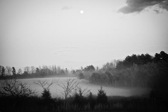 January Fog - The Freckled Farm Soap Company