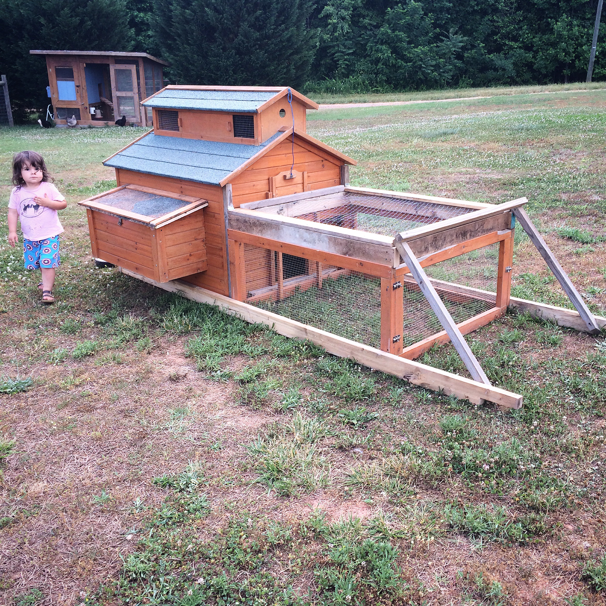Chicken Tractor - The Freckled Farm - The Freckled Farm Soap Company