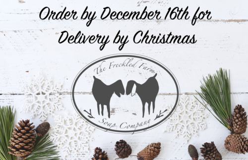 Christmas Delivery from The Freckled Farm Soap Company